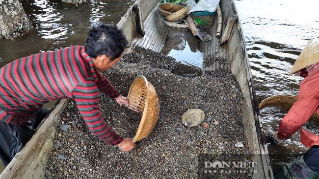 Ngôi làng có nghề ăn tới mần lui, chuyên tìm sinh vật bé bằng móng tay, bán ngày nửa triệu - Ảnh 1.