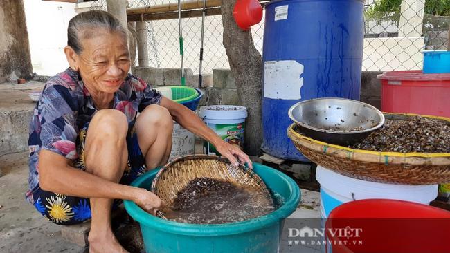 Ngôi làng có nghề ăn tới mần lui, chuyên tìm sinh vật bé bằng móng tay, bán ngày nửa triệu - Ảnh 6.