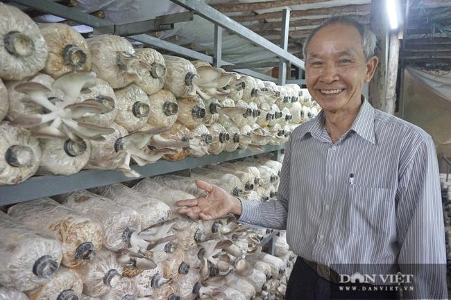 Xây nhà cao cửa rộng, mỗi năm bỏ túi ngót nửa tỷ nhờ trồng và chế biến nấm