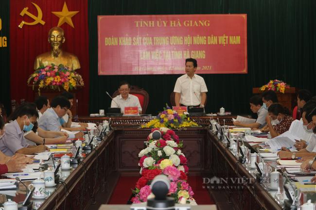 """Thực hiện Nghị quyết 26-NQ/TW của BCH Trung ương Đảng: Hà Giang """"Sống trên đá, thoát nghèo trên đá"""" - Ảnh 4."""
