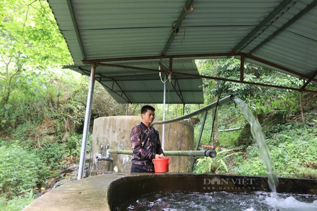 Chàng trai người Dao chăn cá trên núi phát triển cộng đồng - Ảnh 1.