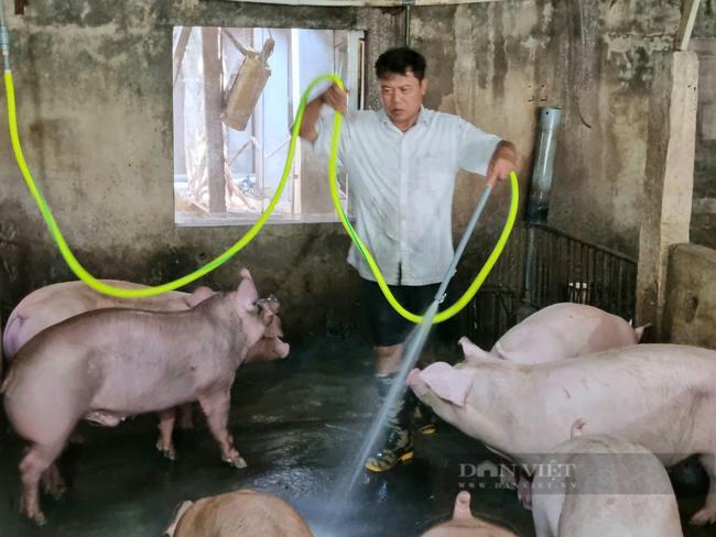 Ninh Bình: Giáo xứ Hợp Thành có Chánh trương uy tín, cũng là hội viên nông dân sản xuất giỏi - Ảnh 3.