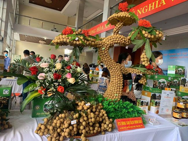 Hưng Yên đưa 1 trong 50 loại trái cây ngon nhất Việt Nam lên đường sang Mỹ, EU - Ảnh 3.