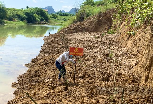 Quảng Bình: Khai quật hơn 6 khúc gỗ sưa ở thượng nguồn sông Son - Ảnh 3.