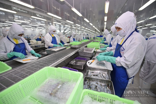 Triển vọng tăng trưởng kinh tế Việt Nam bị hạ xuống vì dịch Covid-19, chuyên gia nói gì? - Ảnh 1.