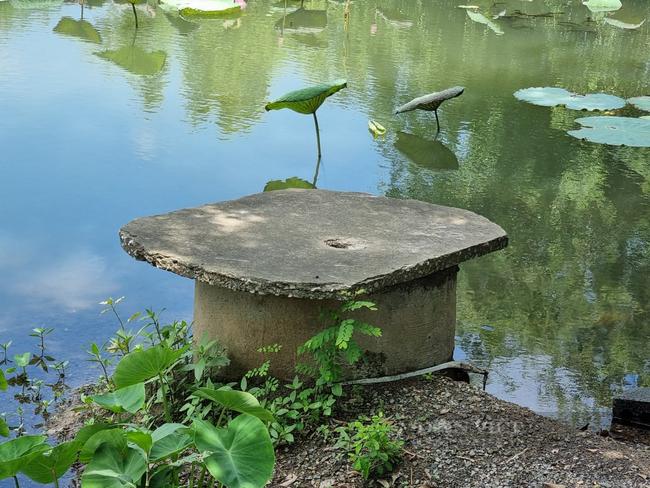 """Ninh Bình: Hàng chục hộ dân làng Quang Hiển """"khát nước"""" sạch sinh hoạt - Ảnh 5."""