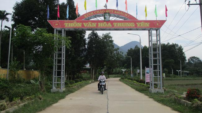 Quảng Nam: Phấn đấu đến hết năm 2021 có tỷ lệ 60% số xã đạt chuẩn nông thôn mới - Ảnh 4.