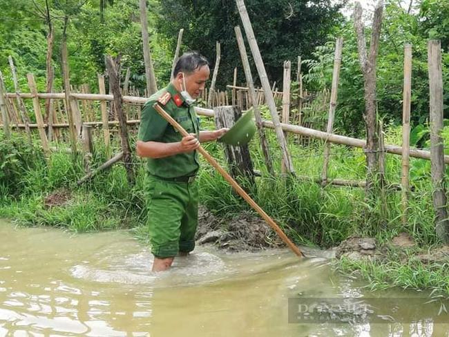 Nghệ  Ann: Các lực lượng tham gia nhổ mạ và cấy lúa giúp dân nơi tâm dịch Chằm Puông - Ảnh 4.