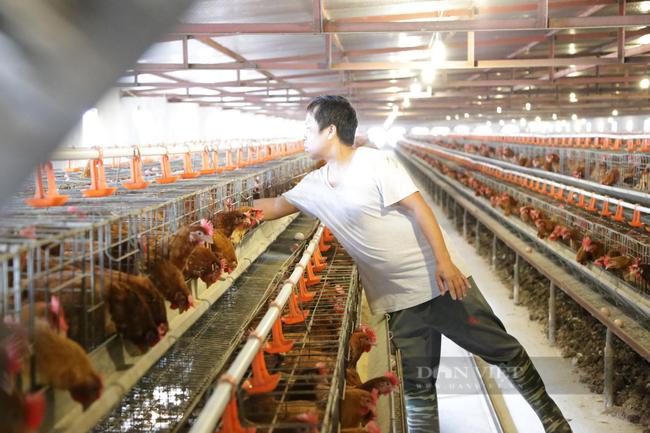 Ông Nguyễn Xuân Thành: Động lực duy nhất là sản xuất công nghiệp chế biến chế tạo để xuất khẩu - Ảnh 3.