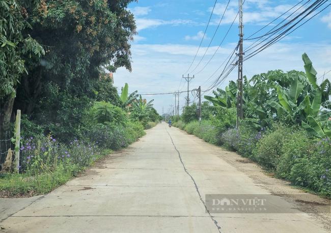 """Ninh Bình: Xã Văn Phong """"nợ"""" tiêu chí nông thôn mới bao giờ trả hết ? - Ảnh 9."""