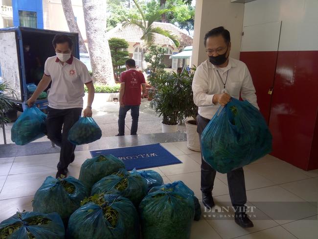 TP.HCM: Tiếp nhận 25 tấn rau củ quả từ 2 công ty Pacific Foods gửi tặng người dân - Ảnh 2.