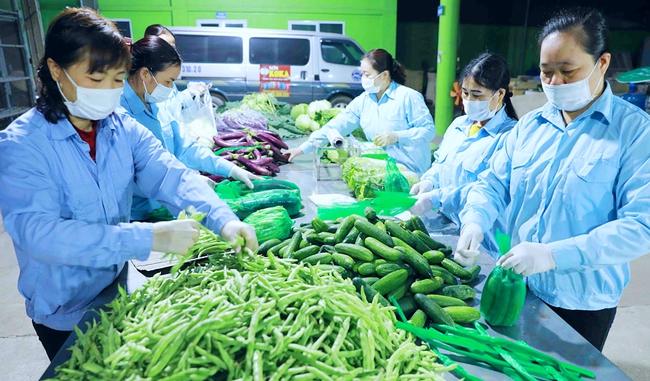 Tiêu thụ nông sản trong bối cảnh dịch Covid-19: Đổi mới phương thức, mở rộng thị trường - Ảnh 1.