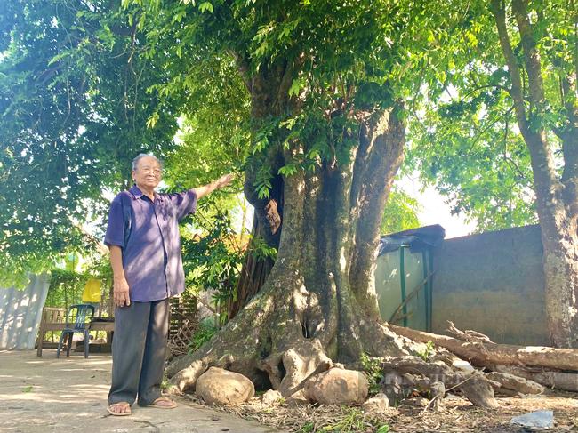 Quảng Bình: Ly kì ở làng thị cổ bên dòng sông Son - Ảnh 2.