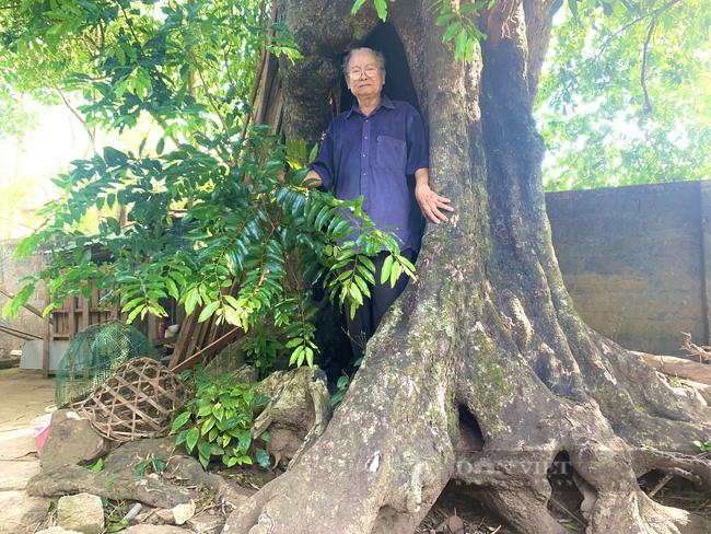 Quảng Bình: Ly kì ở làng thị cổ bên dòng sông Son - Ảnh 5.