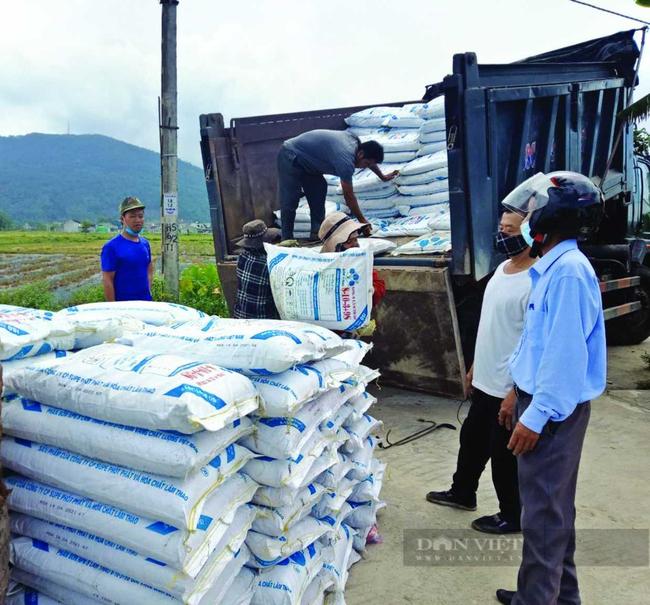 Hơn 3.000 tấn phân bón trả chậm tới tay nông dân  - Ảnh 1.