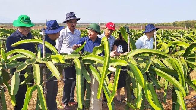 Thứ trưởng Bộ NN PTNT Lê Quốc Doanh (giữa) đến thăm và làm việc tại trang trại Hồng Hà hồi tháng 5/2021. Ảnh: Hồng Hà