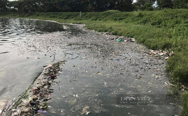 Công ty Thoát nước Hà Nội lý giải nguyên nhân cá chết hàng loạt ở hồ Yên Sở - Ảnh 1.