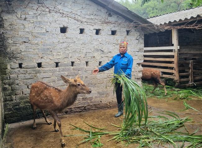Ninh Bình: Huyện Nho Quan trên đường về đích nông thôn mới - Ảnh 6.