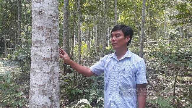 Ôm đống nghề, ông nông dân ở Lai Châu thu cả tỷ đồng mỗi năm - Ảnh 2.