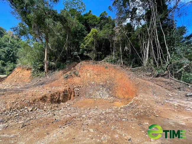 Quảng Ngãi: Chuyển mục đích rừng trồng quy hoạch phòng hộ để làm dự án thuỷ điện Nước Long  - Ảnh 1.