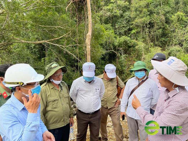 Quảng Ngãi: Chuyển mục đích rừng trồng quy hoạch phòng hộ để làm dự án thuỷ điện Nước Long  - Ảnh 3.