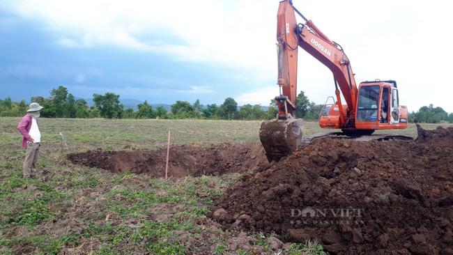 Công ty Trọng Đức đưa cơ giới hóa vào cải tạo đất để bắt đầu trồng ca cao. Ảnh: Nguyên Vỹ