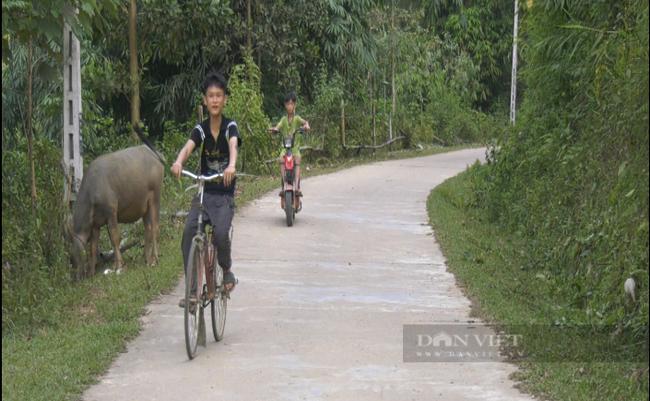 Yên Bái: Vì sao nông dân nơi đây lại bỏ tiền túi đóng góp làm đường giao thông nông thôn - Ảnh 2.