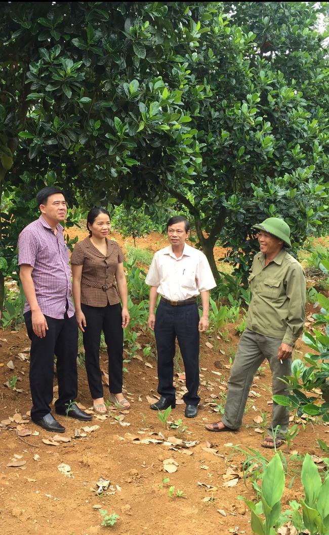 """Thanh Hoá: Mô hình """"5 cùng"""" giúp nông dân trồng mít Thái làm giàu - Ảnh 3."""