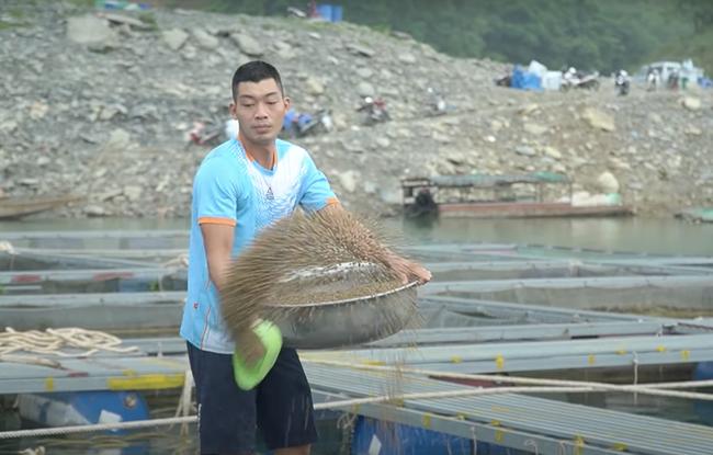 """Bí quyết """"sống khỏe"""" với nghề nuôi cá trên hồ  Na Hang - Ảnh 1."""