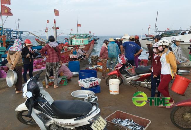 """Quảng Ngãi: Nhiều tàu về cảng bị kẹt """"lệnh cấm"""" đã được phép bán hải sản  - Ảnh 5."""