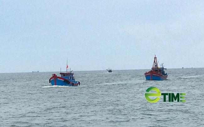 """Quảng Ngãi: Nhiều tàu về cảng bị kẹt """"lệnh cấm"""" đã được phép bán hải sản  - Ảnh 6."""