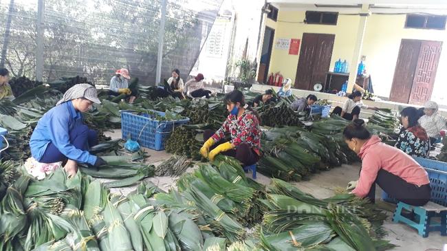 """Sấy thứ lá bỏ đi đem xuất khẩu, một công ty ở Lai Châu """"hái"""" ra tiền  - Ảnh 1."""