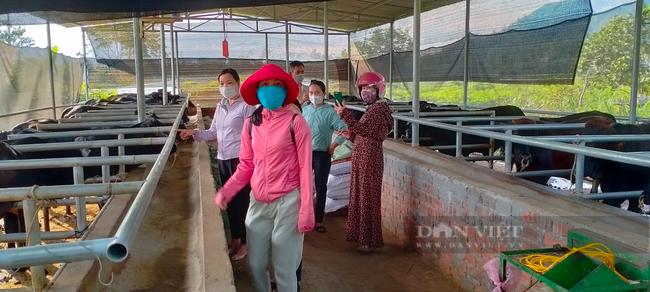Quảng Nam: Đề án phát triển kinh tế vườn sẽ giúp nông dân không để đất trống mà còn nâng cao thu nhập - Ảnh 3.