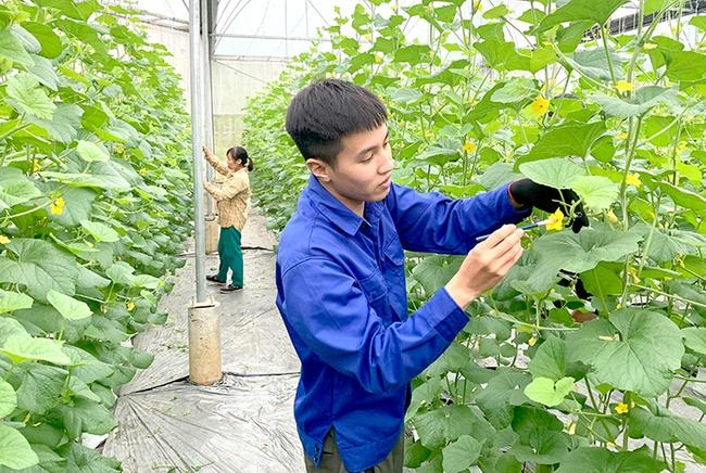 Chuyển đổi số - chìa khóa để phát triển nông nghiệp hiện đại - Ảnh 1.
