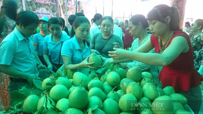 TT-Huế: Hỗ trợ đưa hộ sản xuất nông nghiệp lên sàn thương mại điện tử để tránh bị ép giá  - Ảnh 1.