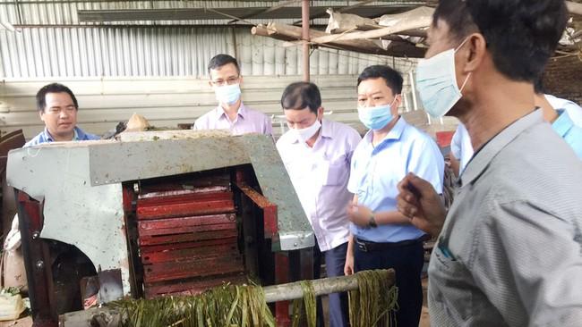 Sáng tạo kỹ thuật giúp nhà nông nhàn nhã - Ảnh 1.