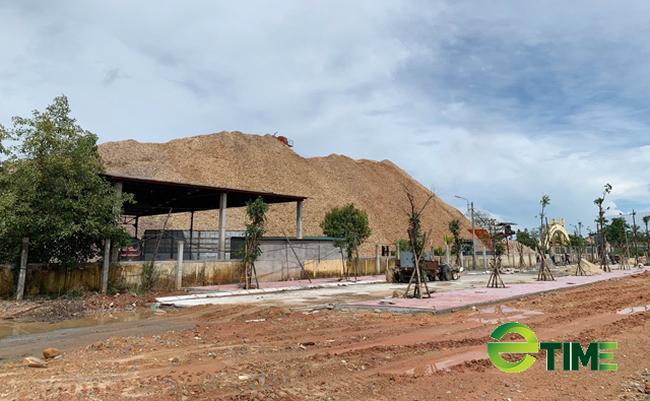 Quảng Ngãi: Xoá sổ Khu công nghiệp Đồng Dinh ra khỏi quy hoạch  - Ảnh 5.