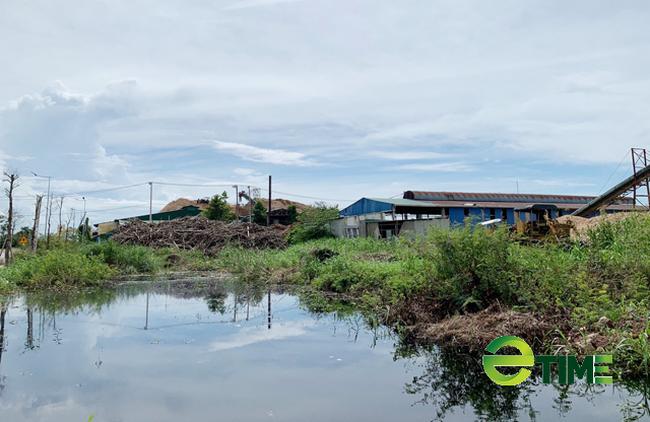 Quảng Ngãi: Xoá sổ Khu công nghiệp Đồng Dinh ra khỏi quy hoạch  - Ảnh 6.