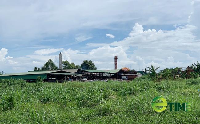 Quảng Ngãi: Xoá sổ Khu công nghiệp Đồng Dinh ra khỏi quy hoạch  - Ảnh 7.