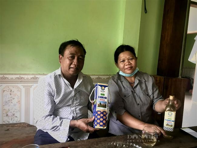 Huế: Vợ chồng Cơ Tu hồi sinh thức uống làm từ thảo dược thất truyền 60 năm, doanh nghiệp đua nhau đặt hàng  - Ảnh 1.