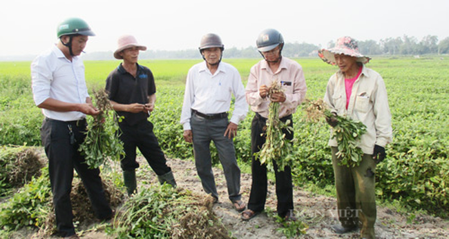 Quảng Nam: Hành trình 10 năm xây dựng nông thôn mới giúp Quế Sơn thay đổi diện mạo - Ảnh 7.