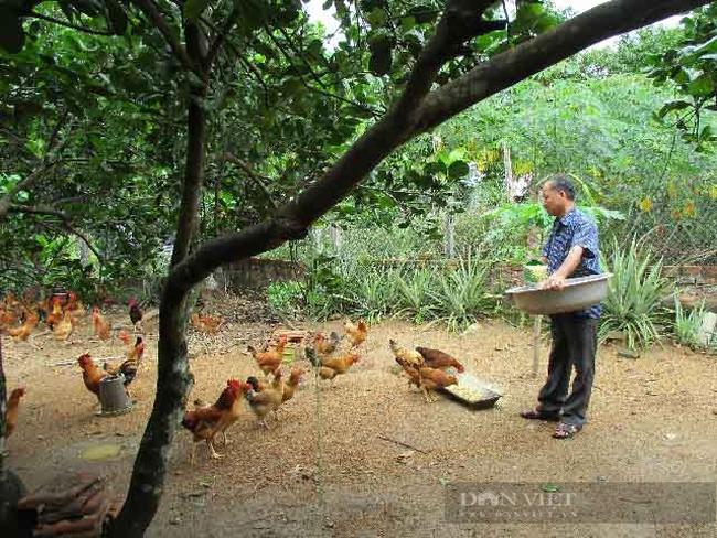 Quảng Nam: Hành trình 10 năm xây dựng nông thôn mới giúp Quế Sơn thay đổi diện mạo - Ảnh 6.
