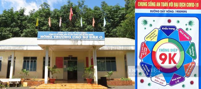 Thông điệp phòng chống dịch 9K ở Nông trường cao su Đăk Ơ, huyện Bù Gia Mập. Ảnh: Trần Khánh