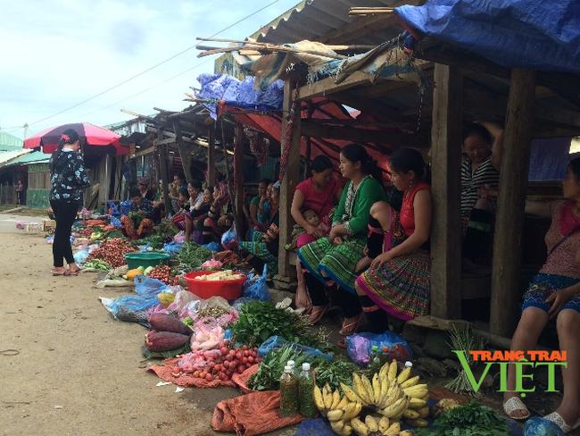 Hội phụ nữ xã Phìn Hồ hỗ trợ hội viên giảm nghèo bền vững - Ảnh 3.