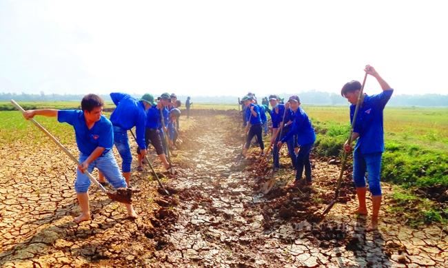 Quảng Nam: Hội Nông dân là lá chắn, chỗ dựa vững chắc để hội viên vươn lên thoát nghèo - Ảnh 5.