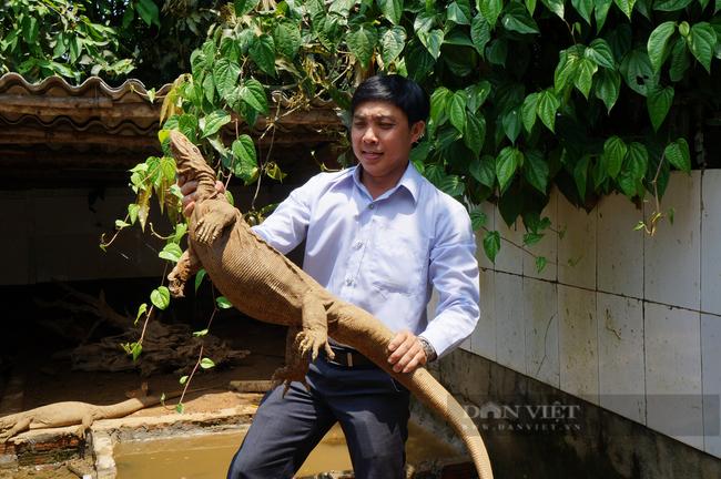 Quảng Nam: Hội Nông dân là lá chắn, chỗ dựa vững chắc để hội viên vươn lên thoát nghèo - Ảnh 4.