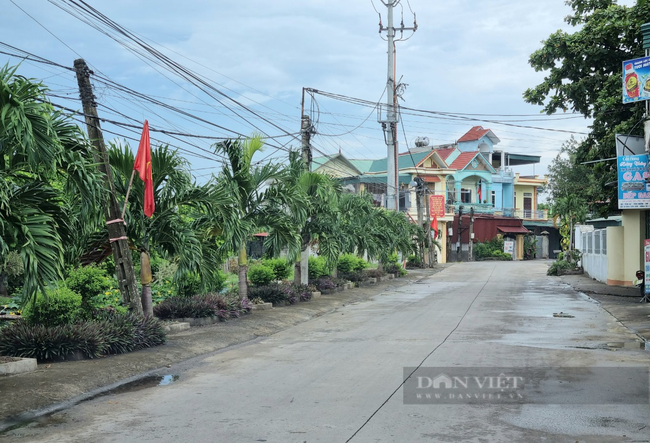 Bức tranh nông thôn mới ở xã Yên Nhân, huyện Yên Mô với hàng cây, đường hoa đẹp mắt. Ảnh: Vũ Thượng