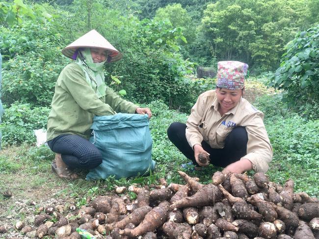 Người dân xã Yên Đồng (huyện Yên Mô) hài lòng, vui mừng khi huyện đạt chuẩn nông thôn mới. Ảnh: Vũ Thượng