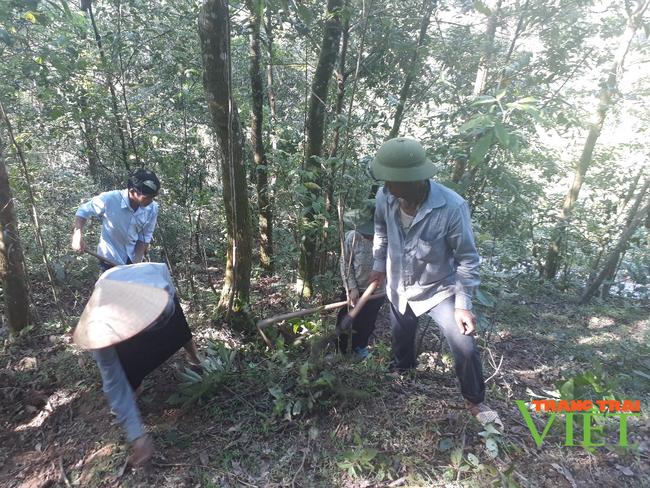 Tân Uyên tăng cường công tác quản lý, bảo vệ rừng - Ảnh 2.