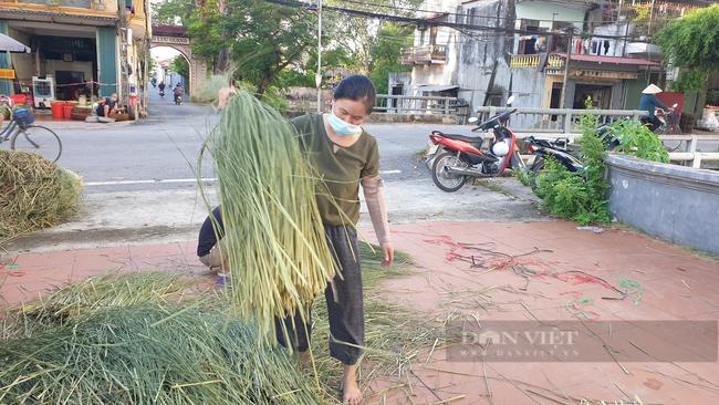 Ninh Bình: Đưa rơm khô xuất ngoại, nông dân ở đây có thêm thu nhập khá - Ảnh 3.